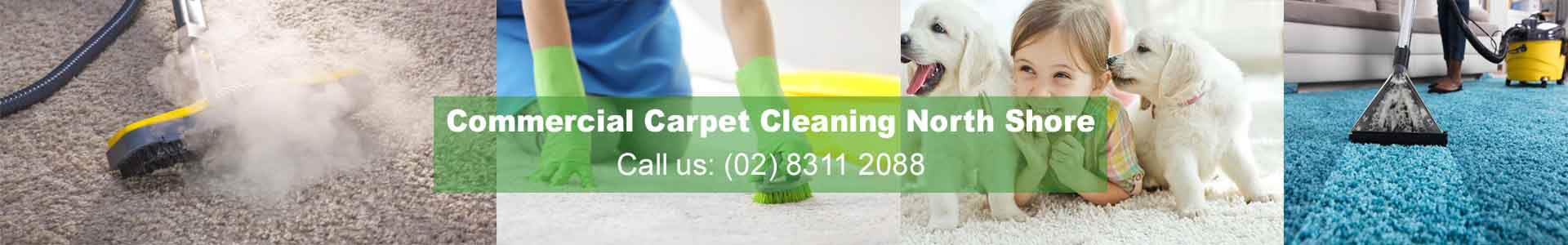 Commercial Carpet Cleaning North Shore